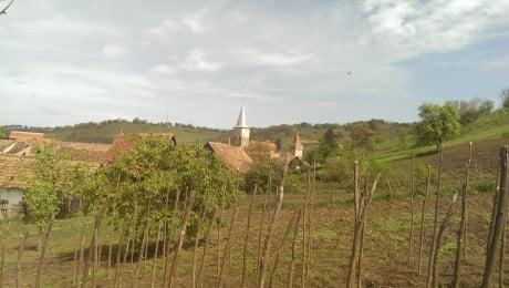 Transylvanian Brunch – evenimentul unde am descoperit bunatatile ardelenesti